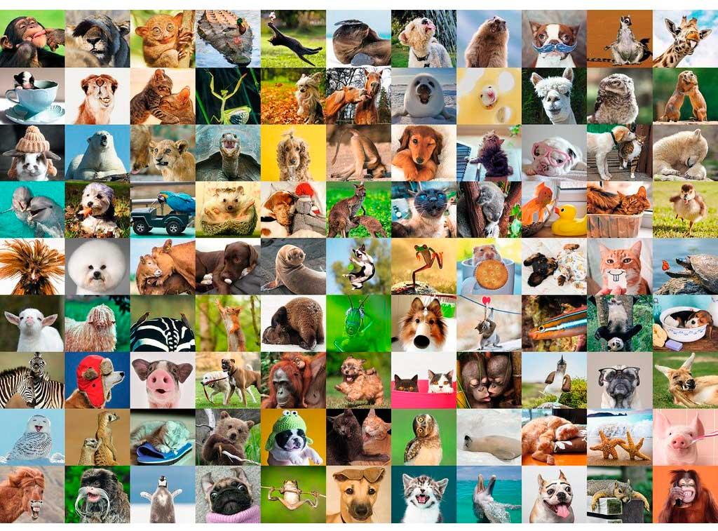 Puzzle Ravensburger 99 Animales Divertidos de 1000 Piezas
