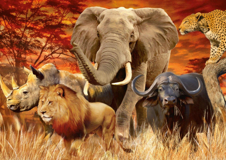 Puzzle Ravensburger Animales de la Sabana Africana de 1000 Pieza