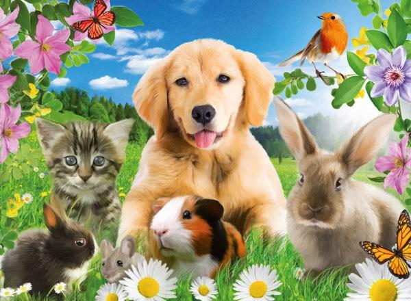 Puzzle Ravensburger Animales en el Jardín de 500 Piezas