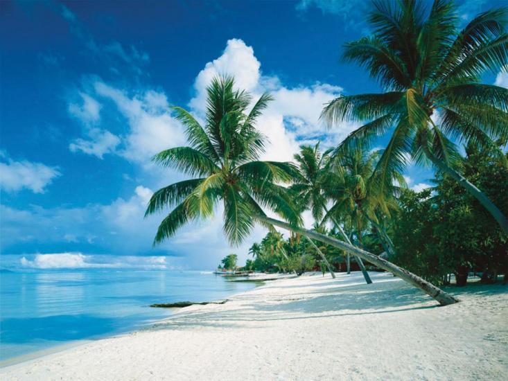 Puzzle Ravensburger Bora Bora de 1000 Piezas