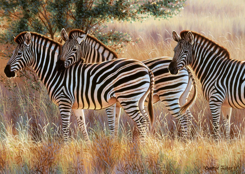 Puzzle Ravensburger Cebras de 1000 Piezas