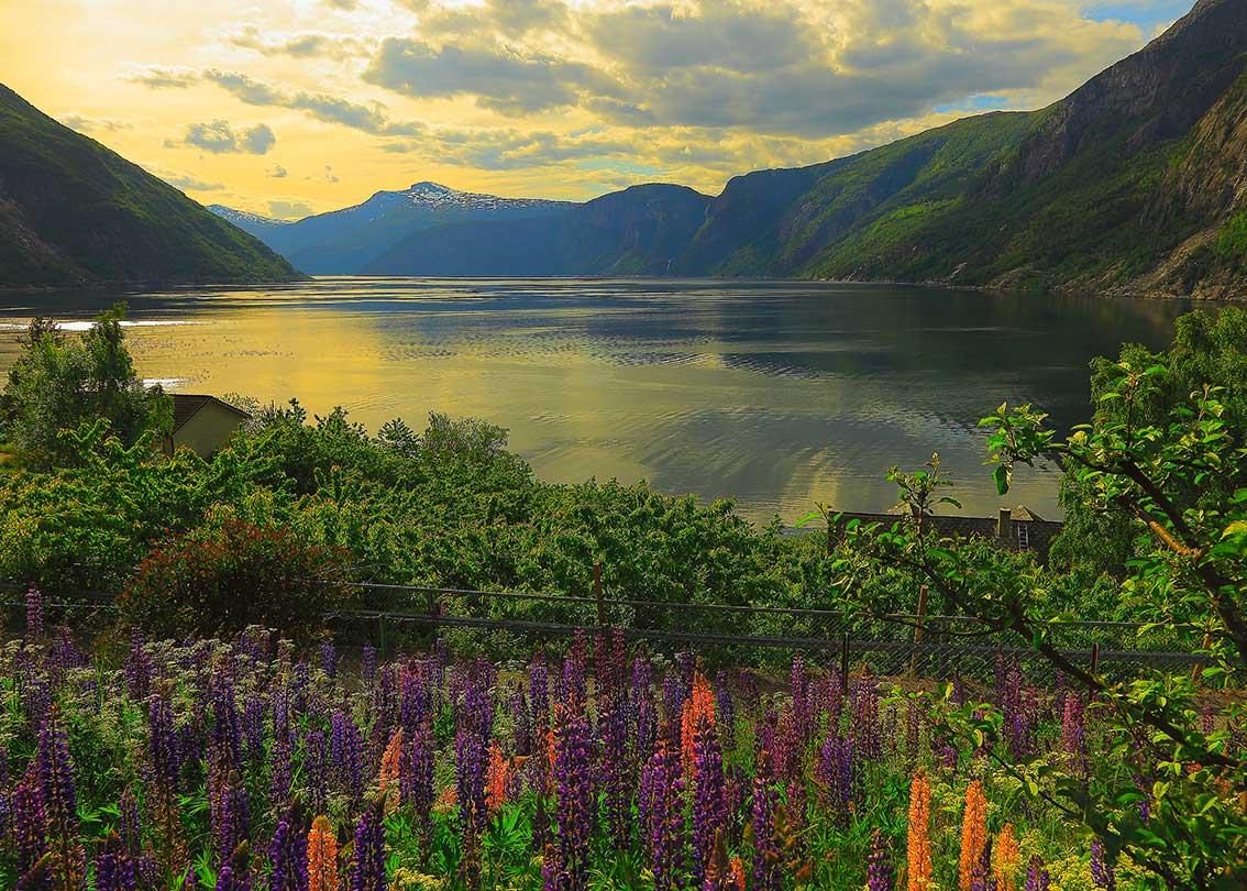 Puzzle Ravensburger Fiordo en Noruega de 1000 Piezas