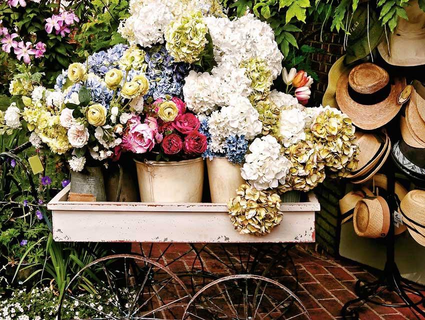 Puzzle Ravensburger Flores y Sombreros de 500 Piezas