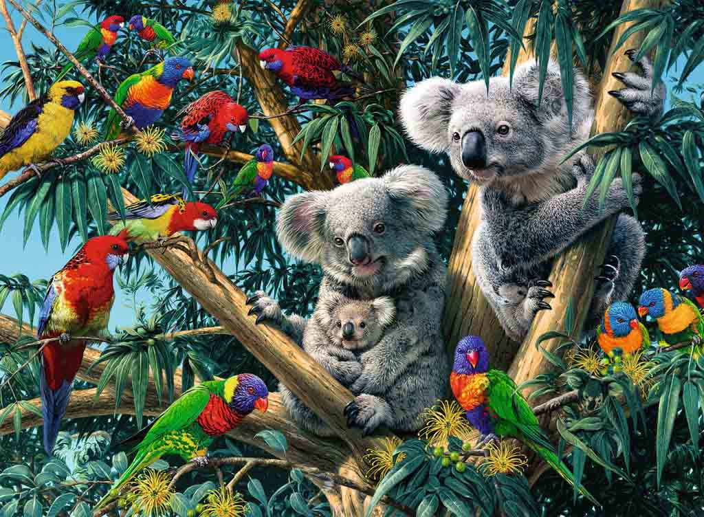 Puzzle Ravensburger Koalas en el Arbol de 500 Piezas