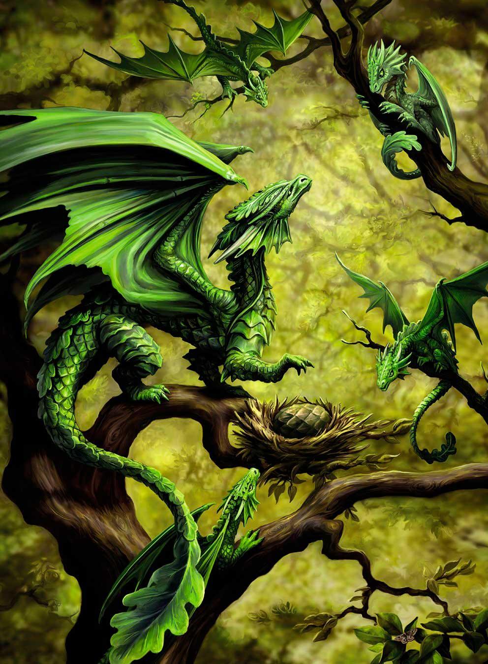 Puzzle Ravensburger La Selva de los Dragones de 500 Piezas