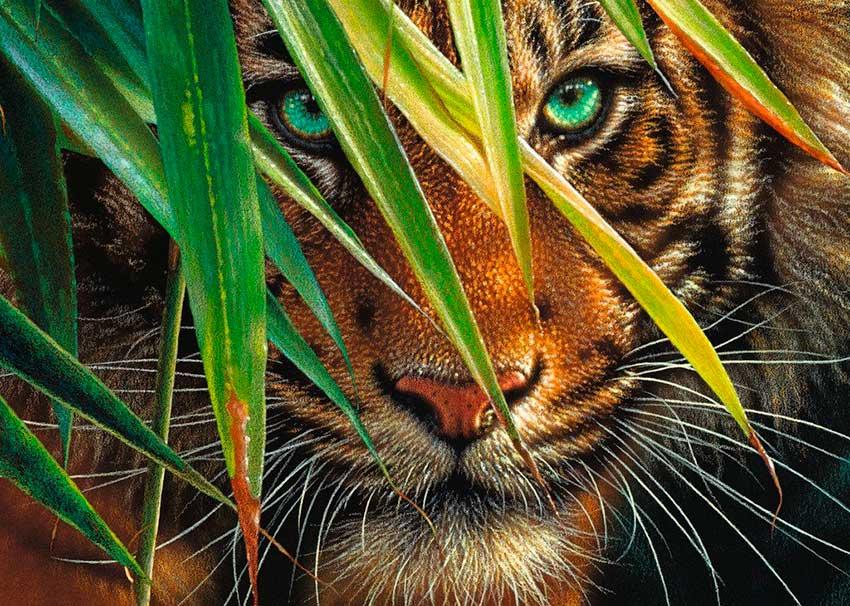 Puzzle Ravensburger Tigre Místico de 1000 Piezas