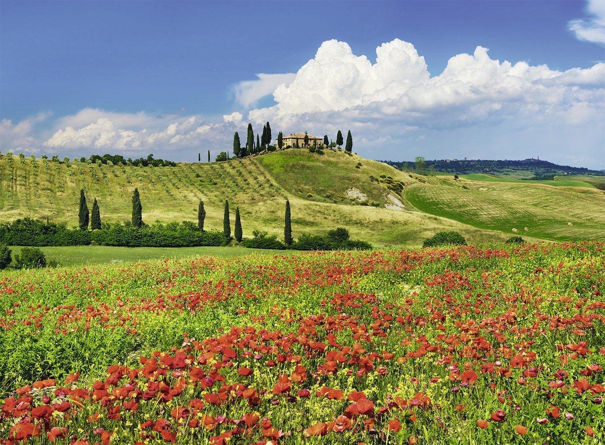 Puzzle Ravensburger Verano en la Toscana 500Piezas