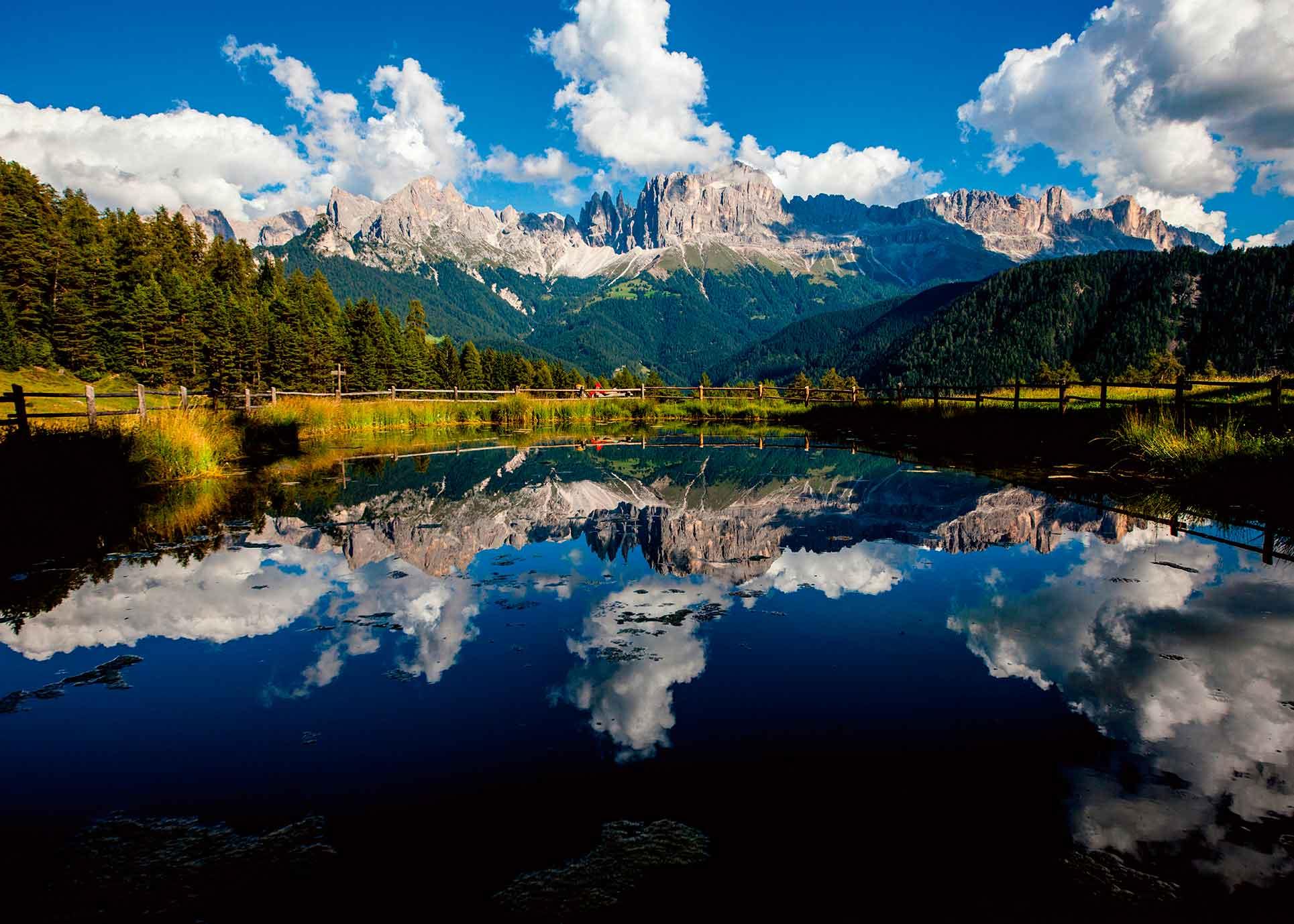Puzzle Ravensburger Vida en la Montaña de 1000 Piezas