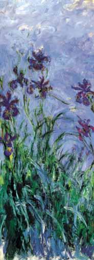 Puzzle Ricordi Iris Mauves de 1000 Piezas