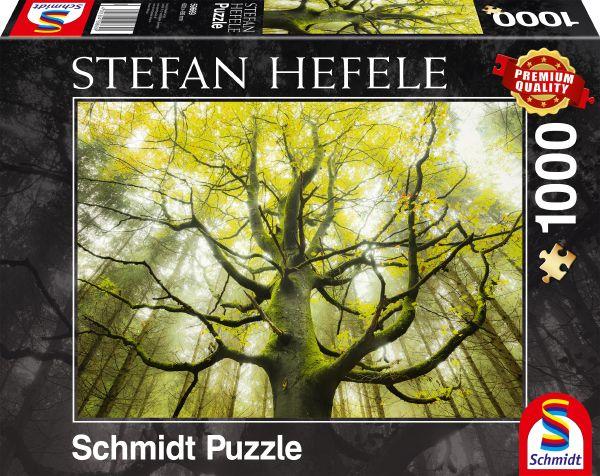 Puzzle Schmidt Árbol de los Sueños de 1000 Piezas