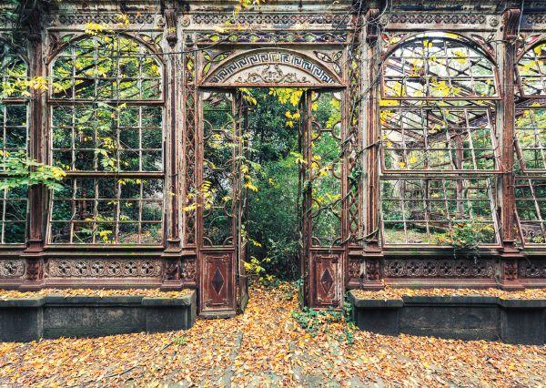 Puzzle Schmidt Arcos con Vegetación de 1000 Piezas