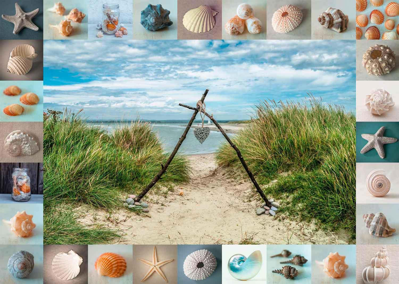 Puzzle Schmidt Encontrados en la Playa de 1000 Piezas