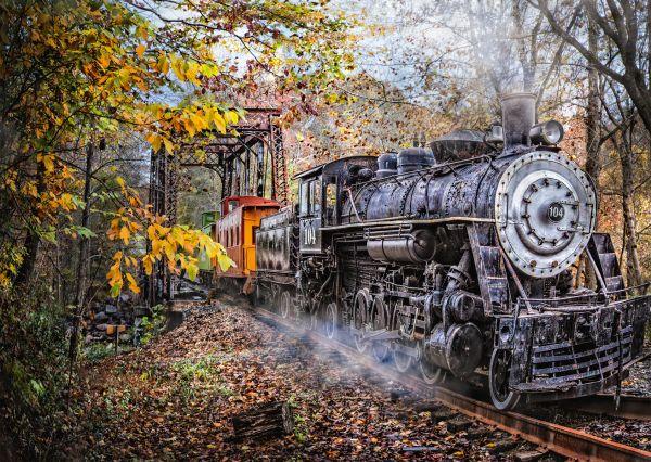 Puzzle Schmidt  Ferrocarril Fascinante de 1000 Piezas