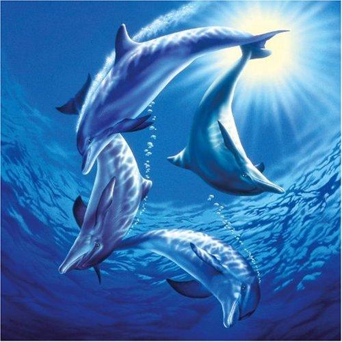 Puzzle Schmidt Familia de Delfines de 1000 Piezas