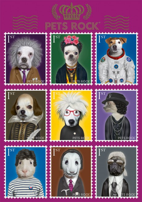 Puzzle Schmidt Pets Rock, Artístas Universales de 1000 Piezas