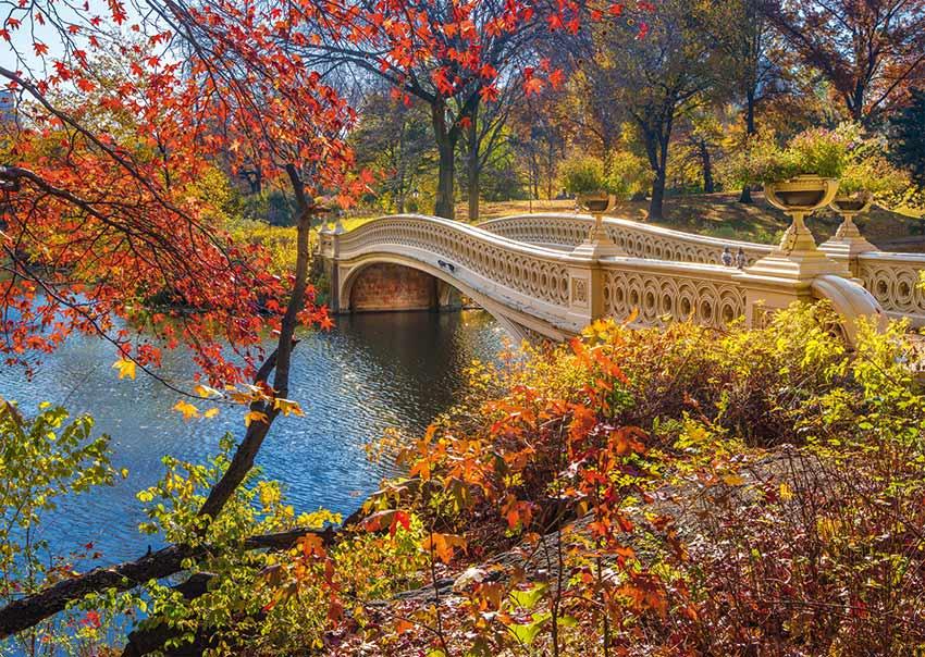 Puzzle Schmidt  Puente de Central Park, Nueva York de 1000 Pieza