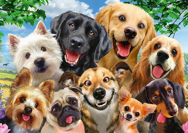 Puzzle Schmidt Selfie de Perros de 500 Piezas
