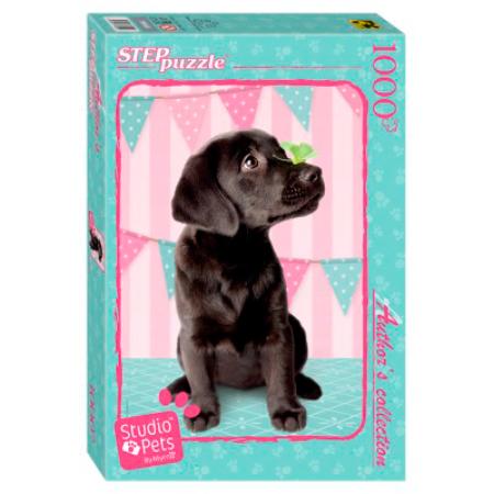 Puzzle Step Puzzle Cachorro Negro de 1000 Piezas