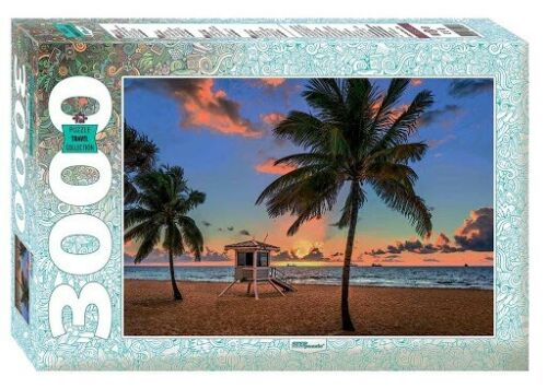 Puzzle Step Puzzle Fort Lauderdale, Florida de 3000 Piezas