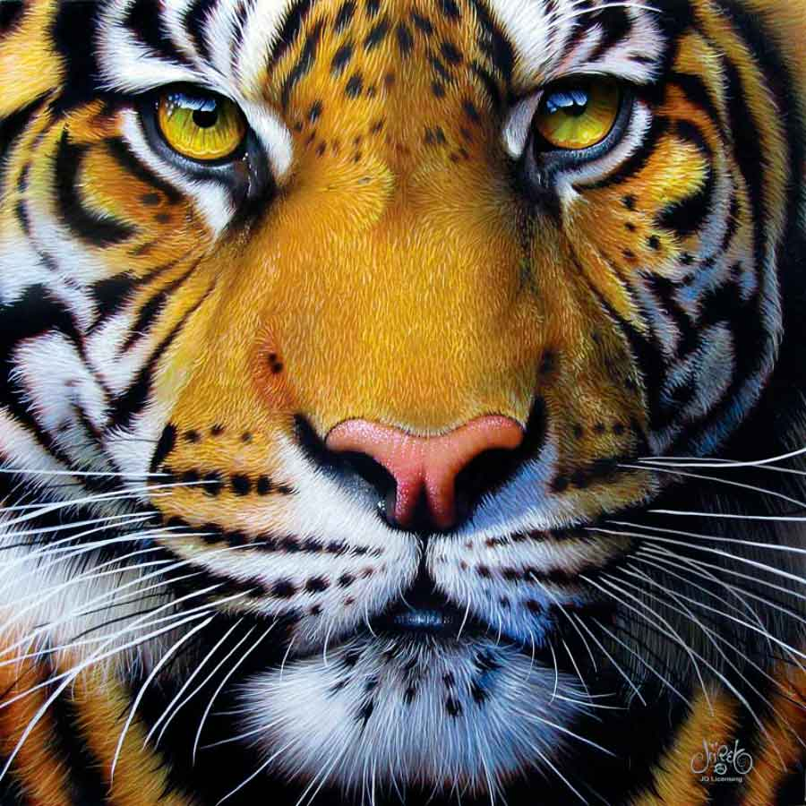 Puzzle SunsOut Cara de Tigre Dorado de 1000 Piezas