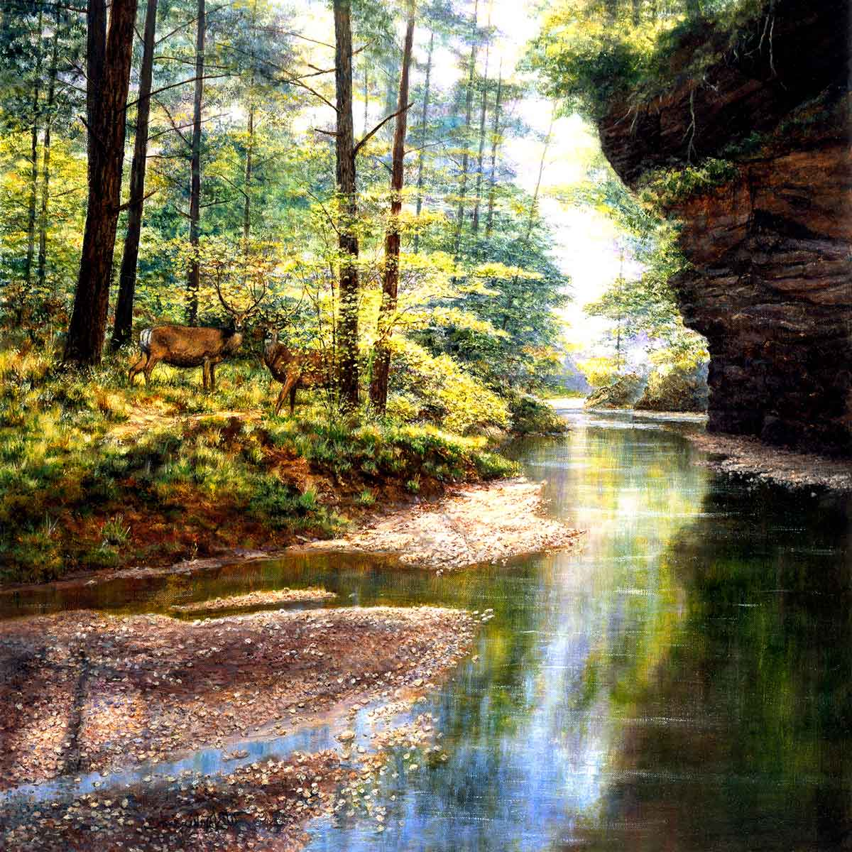 Puzzle SunsOut El Bosque Tranquilo de 1000 Piezas