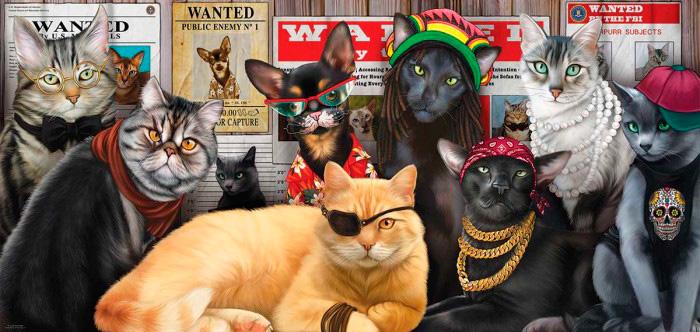 Puzzle SunsOut La Banda de los Gatos de 1000 Piezas