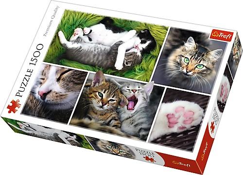 Puzzle Trefl Cosas de Gatos de 1500 Piezas