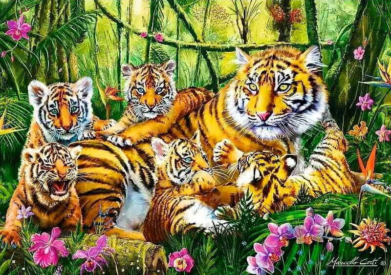 Puzzle Trefl Familia de Tigres de 500 Piezas