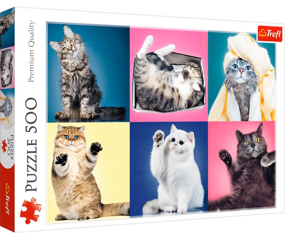Puzzle Trefl Gatitos de 500 Piezas