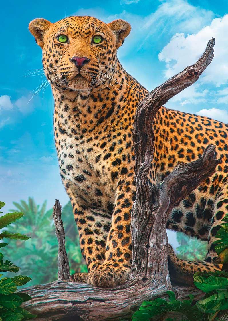 Puzzle Trefl Leopardo Salvaje Amenazante de 500 Piezas