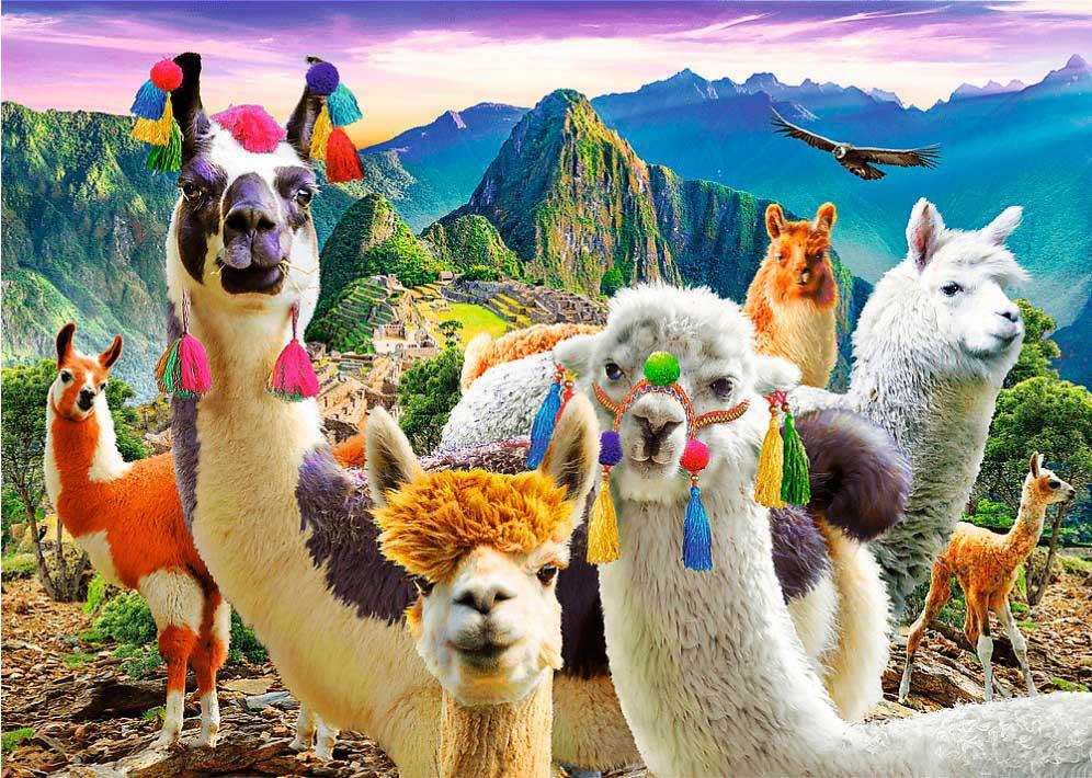 Puzzle Trefl Llamas en Machu Picchu de 500 Piezas