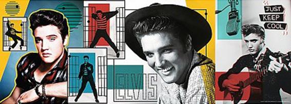 Puzzle Trefl Panorama Collage Elvis Presley de 500 Pzs