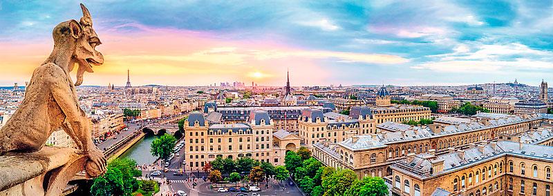 Puzzle Trefl Vista desde la Catedral de Notre Dame de 1000 Pieza